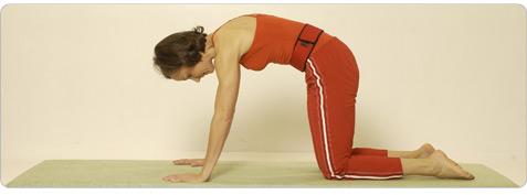 Schutzschild Pilates Übung