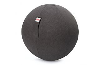 SISSEL® Gym Ball Cover Ø 65 cm